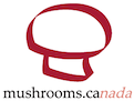 Mushrooms.ca