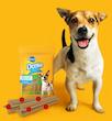 Denta Stix dog treats