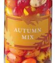 jellybelly autumn mix