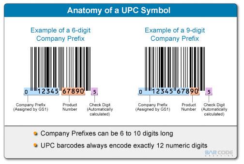 anatomy of a upc