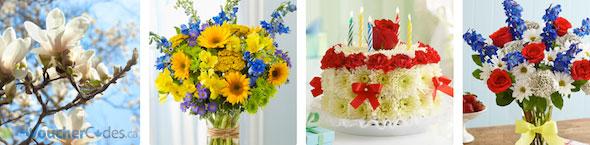 1800 Flowers Offer