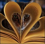 Cats and Books in Love