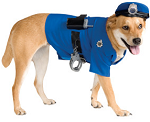 Petsmart costume