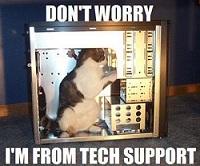 Technician Cat